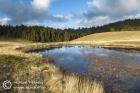 Temporary pond