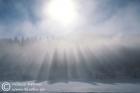 Sun in the mist