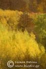 Autumn colours in Vathirema ravine