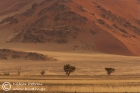 Namib-Naukluft National Park