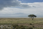 Clouds over the Pan, Etosha
